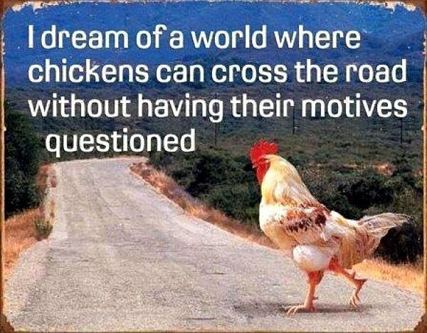 road_chicken.jpg~original.jpeg
