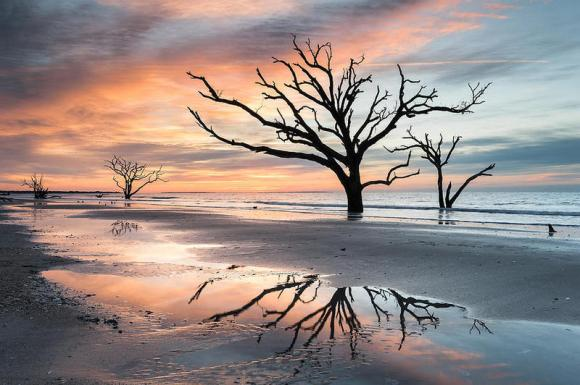 a-moment-of-reflection-charlestons-botany-bay-boneyard-beach-mark-vandyke.JPG